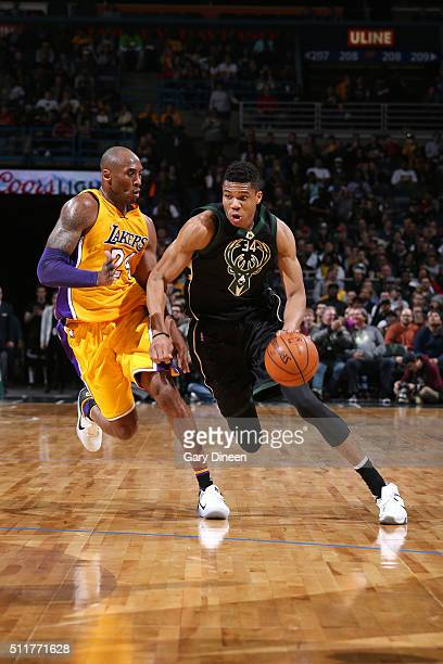 Giannis Antetokounmpo of the Milwaukee Bucks handles the ball during the game against Kobe Bryant of the Los Angeles Lakers on February 22 2016 at...