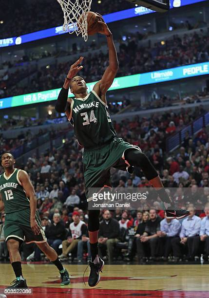 Giannis Antetokounmpo of the Milwaukee Bucks lays in a shot against the Chicago Bulls at the United Center on January 5 2016 in Chicago Illinois NOTE...