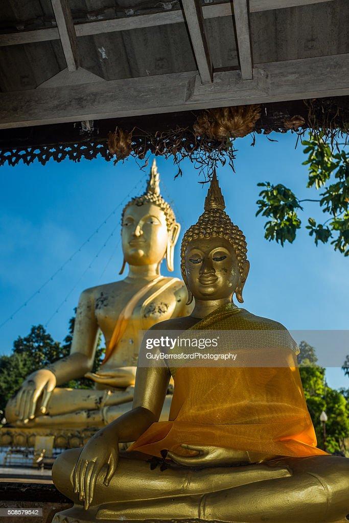 Riesenbuddha : Stock-Foto