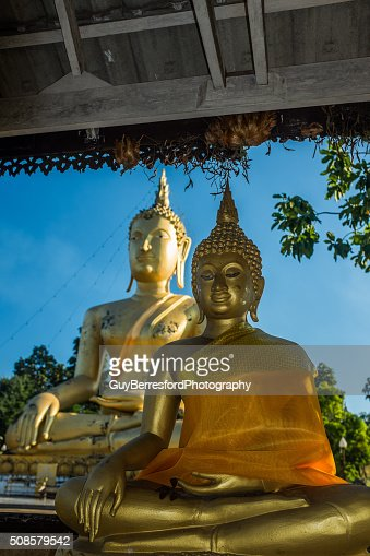 Giant buddha : Stock Photo