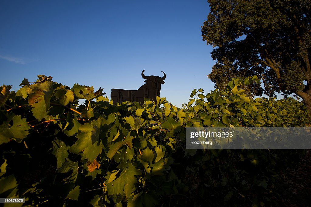 A giant bull advertisement for the Bodegas Osborne SA winery stands above grape vines growing in the company's vineyards in Malpica de Tajo, Spain, on Wednesday, Sept. 11, 2013. Spanish manufacturing expanded in August for the first time in more than two years, strengthening Prime Minister Mariano Rajoy's prediction that exports will help the economy emerge from recession this year. Photographer: Angel Navarrete/Bloomberg via Getty Images