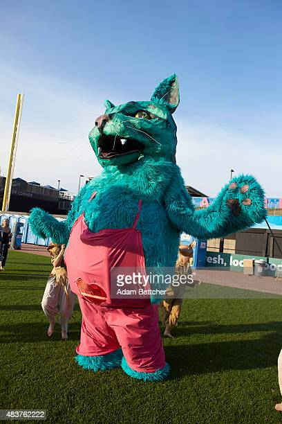 A giant cat walks around with mice handlers while entertaining 13000 cat fans gather for the fourth annual Internet Cat Video Festival at CHS Field...