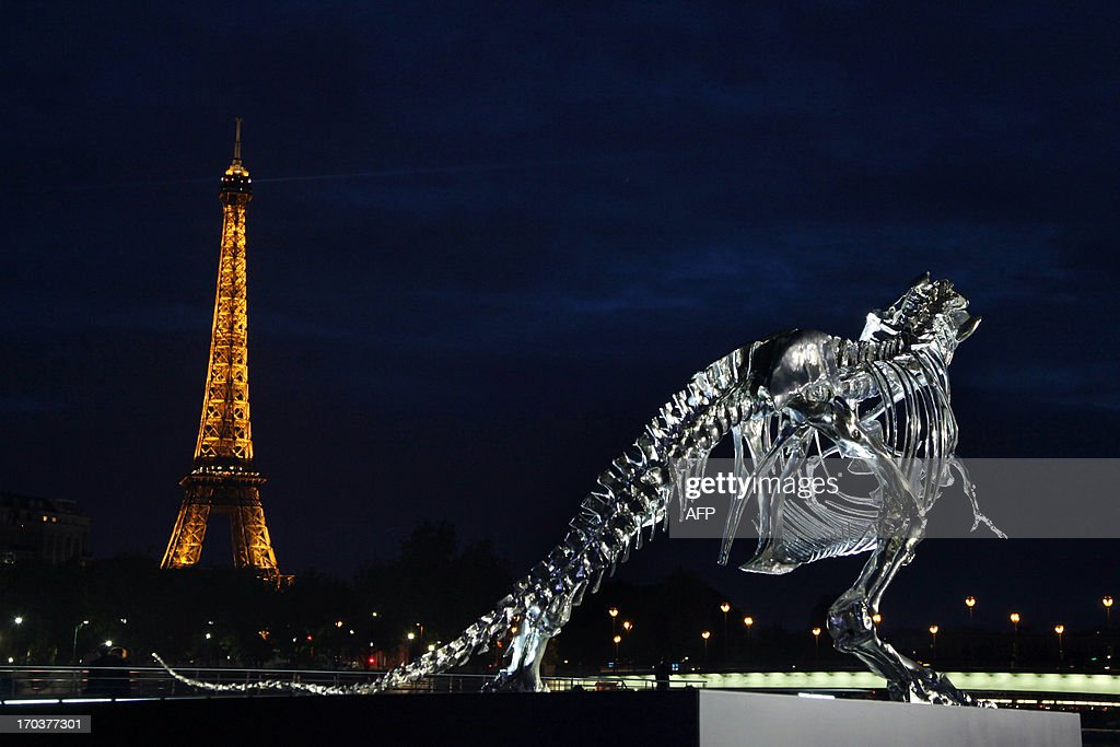A giant chrome brushed aluminium skeleton of a Tyrannosaurus (T-Rex) dinosaur (R), made by French sculptor and painter Philippe Pasqua, stands at the pier of riverboat company Bateaux-Mouches on June 12, 2013 in Paris, with the Eiffel tower in the background (L).