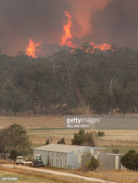 A giant fire raging in the Bunyip State Park near Labertouche closes in on farm building some 125 kilometres west of Melbourne on February 7 2009...