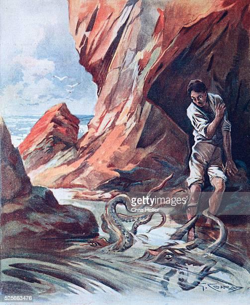 giant octopus attacks man - photo #14