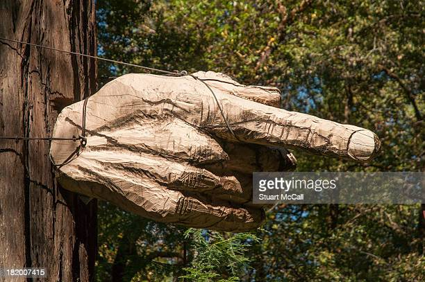 Giant pointing hand attached to a tree.