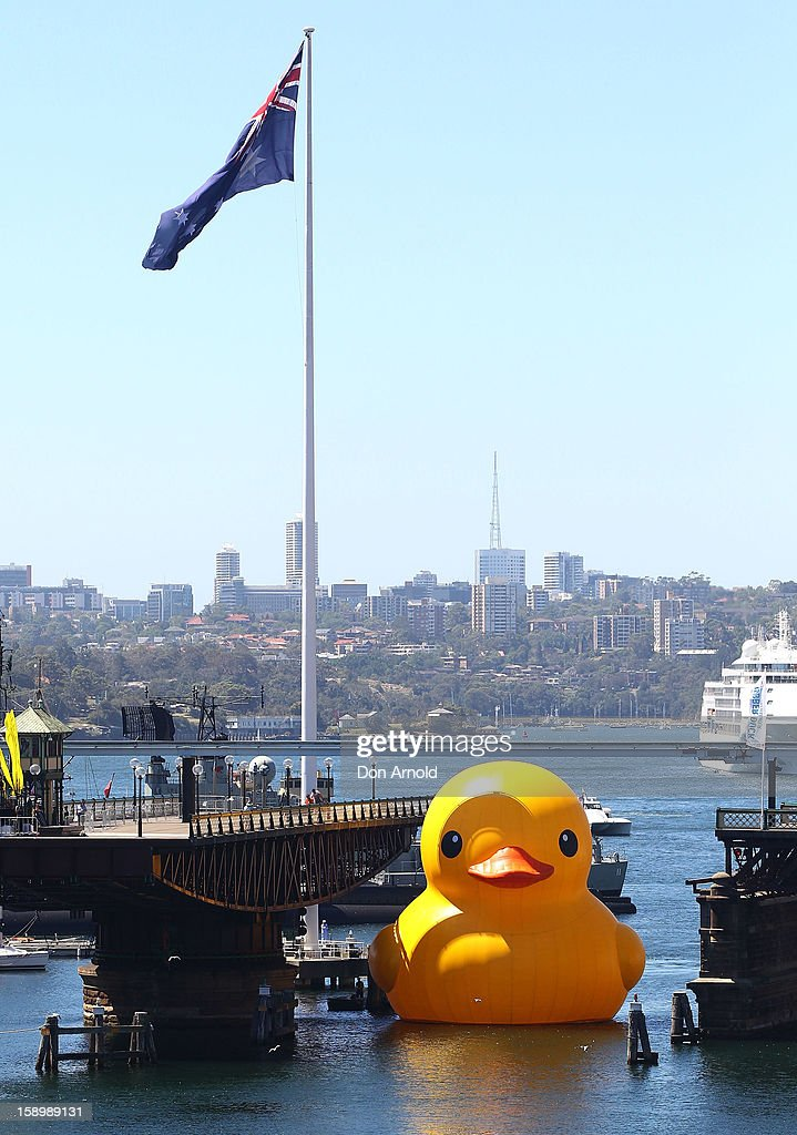 A giant rubber duck created by Dutch artist Florentijn Hofman, arrives at Darling Harbour to kick off the Sydney Festival on January 5, 2013 in Sydney, Australia.