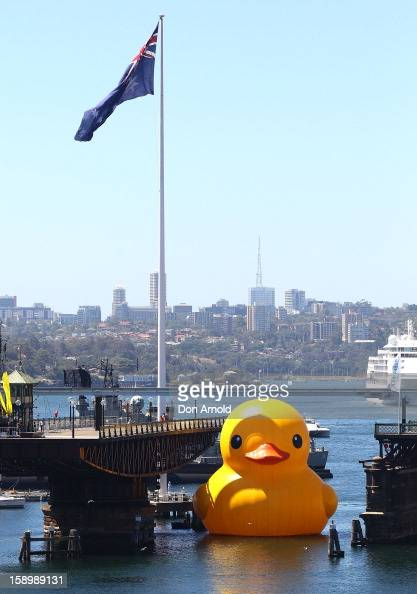 A giant rubber duck created by Dutch artist Florentijn Hofman arrives at Darling Harbour to kick off the Sydney Festival on January 5 2013 in Sydney...