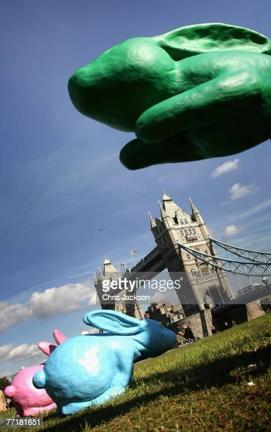 Giant technicolor rabbits are seen on the grass in front of Tower Bridge on October 4 2007 in London England The rabbits will feature in Sony's next...