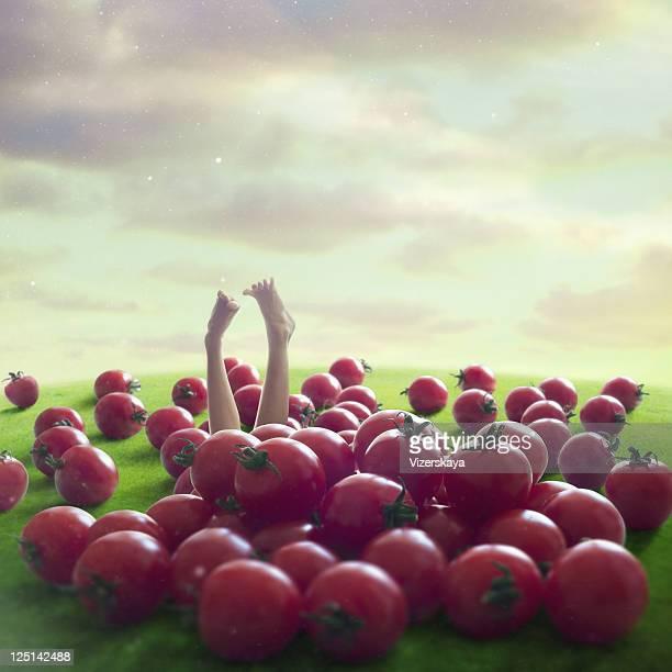 Giant tomatos