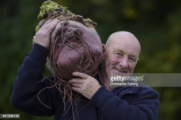 Giant vegetable grower Joe Atherton from Mansfield poses with his giant award winning beetroot that weighed in at 1681kg at the Harrogate Autumn...