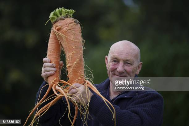 Giant vegetable grower Joe Atherton from Mansfield poses with his giant award winning carrot that weighed in at 396kg at the Harrogate Autumn Flower...