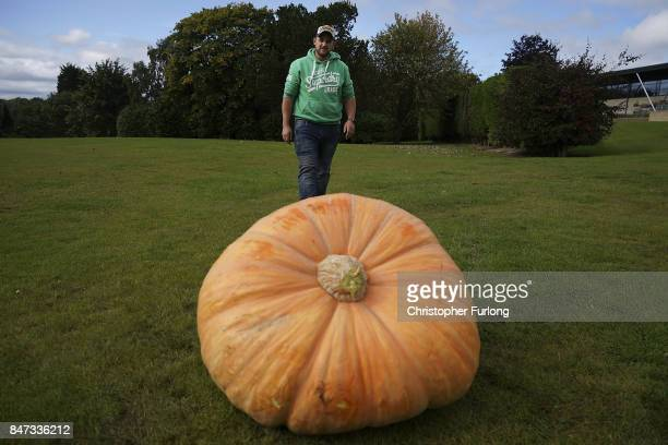 Giant vegetable grower Richard Mann from Leeds from poses with his giant award winning pumpkin that weighed in at 31071kg at the Harrogate Autumn...
