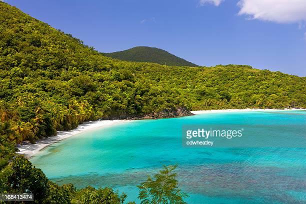 ギブニービーチ、ホークスネスト湾、セントジョン、米領バージン諸島