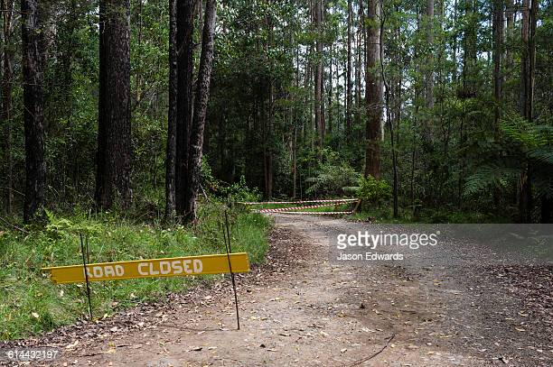 Emergency services road closed sign on a forest track during bushfires.