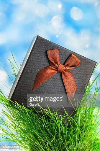 Gift box with bow : Stock Photo