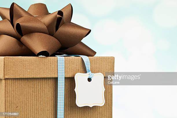 Gift in Recycled Packaging and Bow