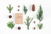 Christmas composition. Gift, different winter plants on white background. Christmas, winter, new year concept. Flat lay, top view