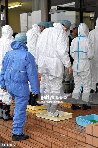 Gifu Prefecture staffs deploying in chicken culling operation soak their shoes into the antiseptic solution on arrival at the meeting point after...