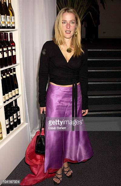 Gillian Anderson California Dreaming In Aid Of Facing The World Charity The Old Saatch Gallery West Hampstead London