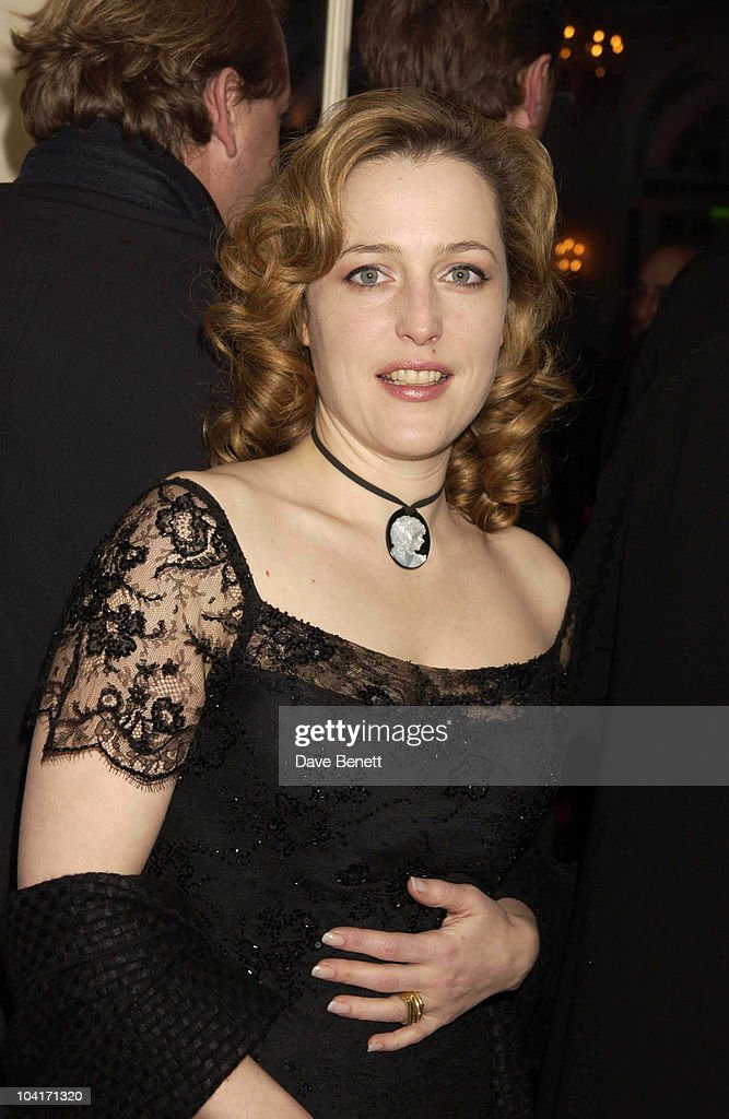 Gillian Anderson, The Evening Standard Film Awards, At The Savoy Hotel In London