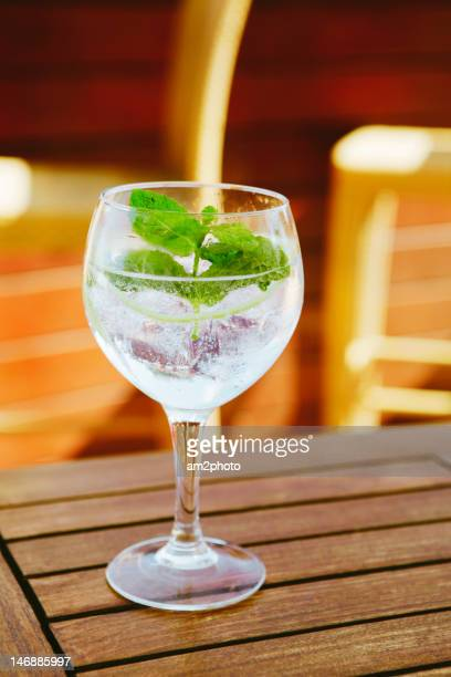 Gin Tonic with mint leaf