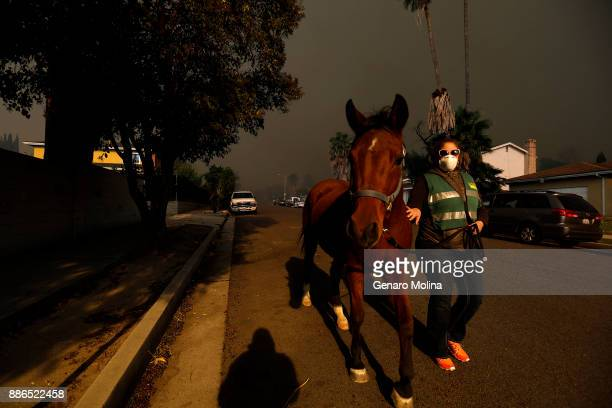 Gina Donaldson evacuates her horse as the Creek Fire bears down on Foothill Blvd in Sylmar on December 5 2017