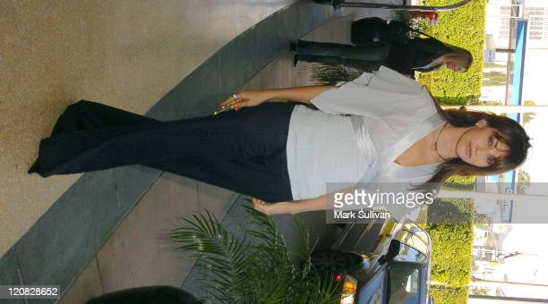 Gina Gershon during 2004 Cable Press Tour Day 3 at Renaissance Hollywood Hotel in Hollywood California United States
