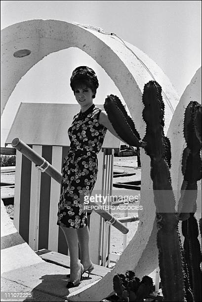 Gina Lollobridgida Atmosphere Of Cannes Film Festival In Cannes France On May 24 1965