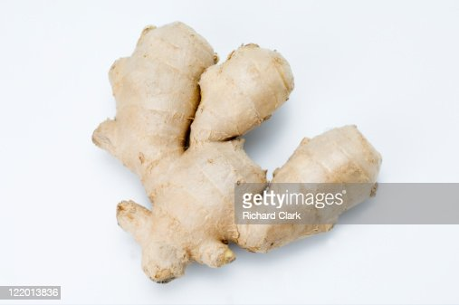 Ginger (Zingiber)
