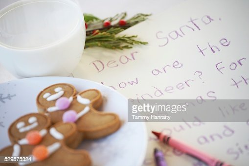Gingerbread Cookies Left for Santa Claus : Stock Photo