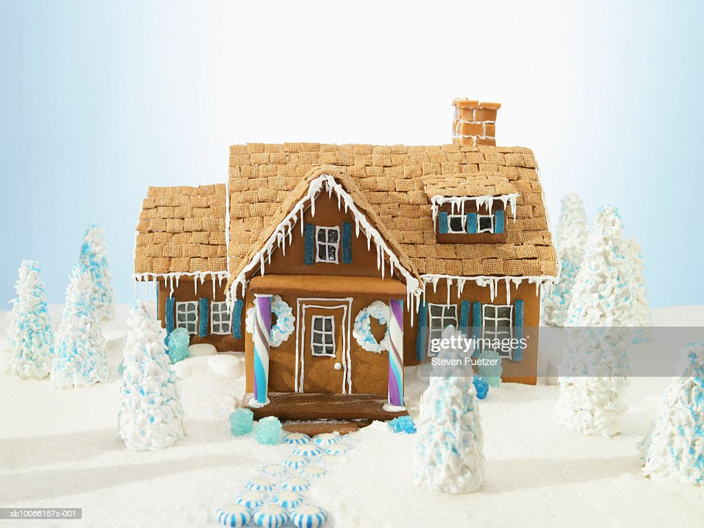 Gingerbread house surrounded by miniature trees
