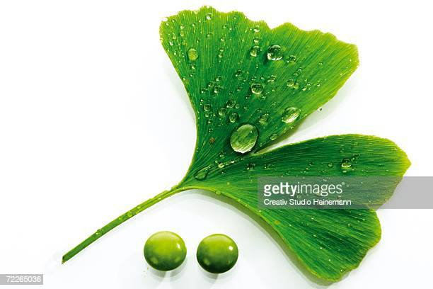 Ginkgo leaf and pills, close-up