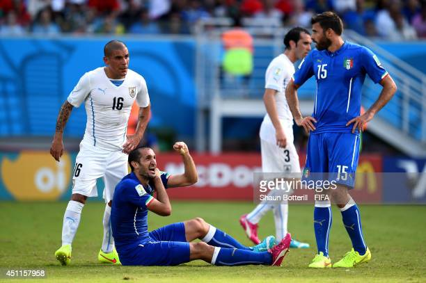 Giorgio Chiellini of Italy appeals after a clash with Luis Suarez of Uruguay during the 2014 FIFA World Cup Brazil Group D match between Italy and...