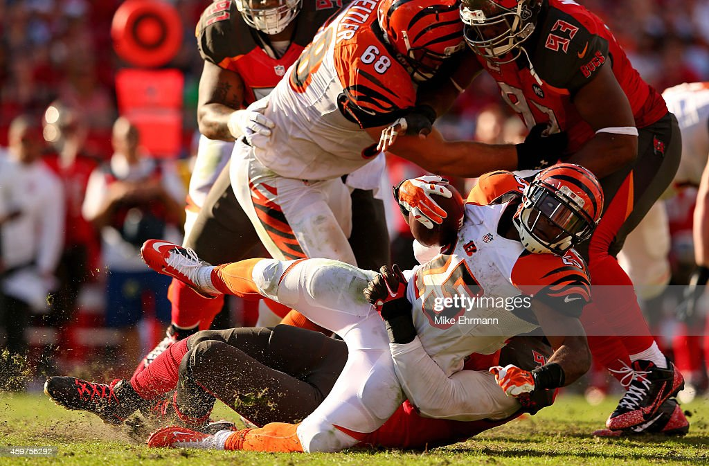Giovani Bernard of the Cincinnati Bengals rushes during a game against the Tampa Bay Buccaneers at Raymond James Stadium on November 30 2014 in Tampa...