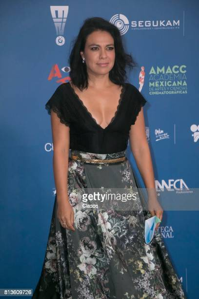 Giovanna Zacarias poses during during the 59th Ariel Awards Red Carpet at Palacio de Bellas Artes on July 11 2017 in Mexico City Mexico