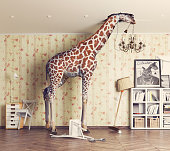 giraffe breaks the ceiling in the living room. Photo and cg  combination concept
