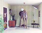 giraffe in the living room. creative concept. Photo and cg elements combination
