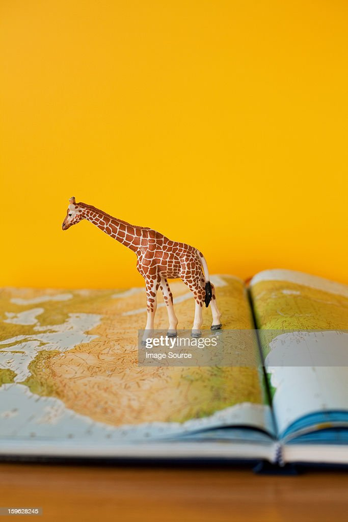 Giraffe on map of Africa