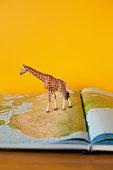 Giraffe on map of Africa