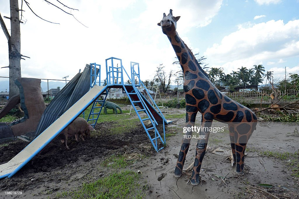 A giraffe statue (R) is half submerged in mud at a park in New Bataan in Compostela Valley province on December 9, 2012 five days after Typhoon Bopha hit the southern Philippines. Desperate families begged for food on December 9 days after the typhoon brought death and destruction to parts of a southern Philippine island, as the storm returned to the north of the country. AFP PHOTO/TED ALJIBE