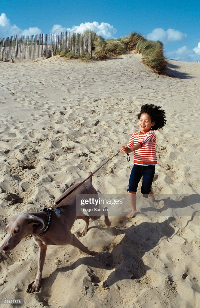 Girl and dog : Stock Photo
