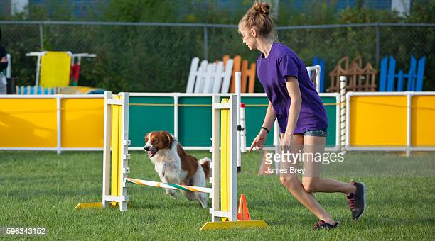 Girl and dog working together in agility competition