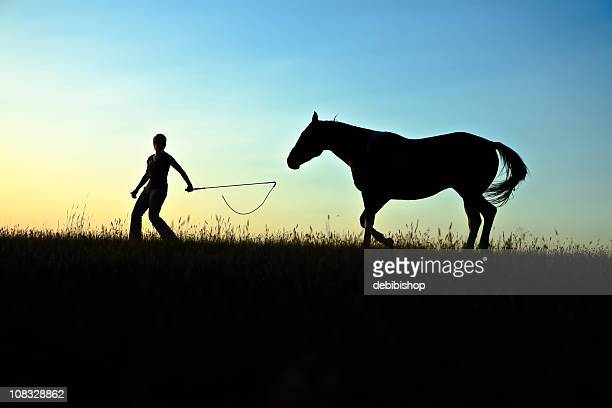 Girl And Horse In Silhouette