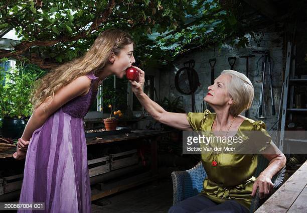 Girl (10-11) biting red apple offered by senior woman