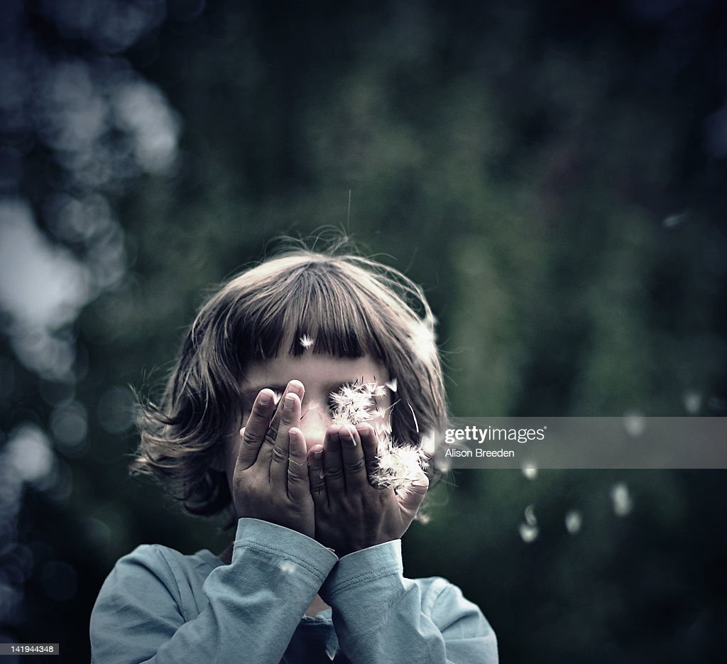 Girl blowing dandelion seeds : Stock Photo