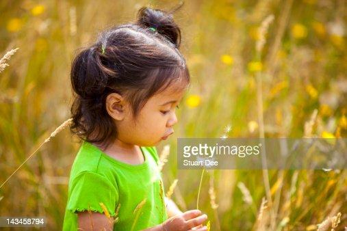 Girl blowing dandelion seeds : Stock Photo