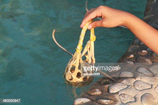 Girl boiling eggs : Stock Photo