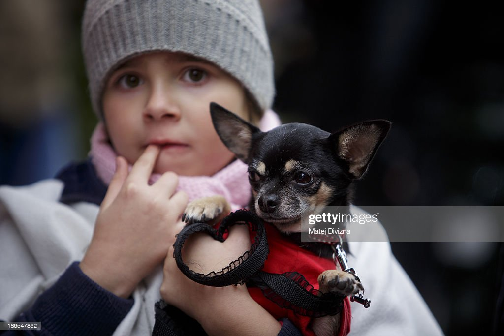 A girl carries a dog as she attends an animal rights activists' protest in the All Saints' Day on November 1, 2013 in Prague, Czech Republic. Activists were protesting against the Romania law for stray dog culling approved by Romania's constitutional court in September this year. According to estimates 65,000 stray dogs live on the streets of Bucharest.