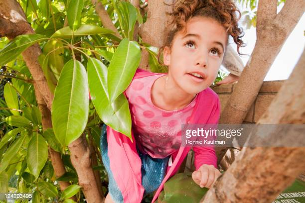 Girl climbing in a tree